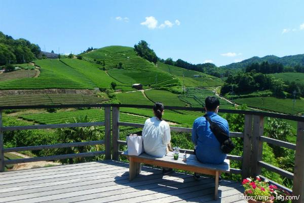 お茶の京都日帰り一人旅